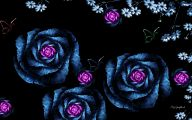 Blue Roses Wallpaper  29 Free Hd Wallpaper