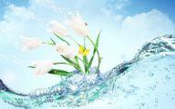 Flower Wallpaper For Iphone 5  16 Widescreen Wallpaper