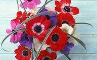 Flower Wallpaper For Iphone 5  2 Desktop Background
