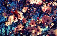 Flower Wallpaper Tumblr  5 Background Wallpaper