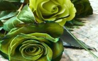 Green Roses Wallpaper  14 Free Wallpaper
