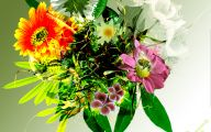 Green Roses Wallpapers  4 Desktop Background