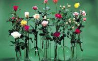 Off White Rose Desktop Wallpaper  2 Cool Wallpaper