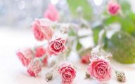 Pink Rose Wallpaper For Desktop  7 Wide Wallpaper