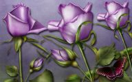 Purple Rose Wallpaper Border  12 Free Wallpaper
