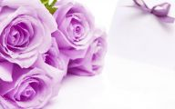 Purple Rose Wallpaper Home  20 Desktop Wallpaper