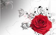 Red Rose Wallpaper Free Download  18 Hd Wallpaper