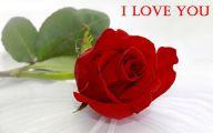Red Rose Wallpaper Free Download  20 Free Wallpaper