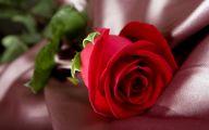 Red Rose Wallpaper Free Download  22 Hd Wallpaper