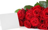 Red Roses Wallpapers Free  11 Hd Wallpaper