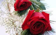 Red Roses Wallpapers Free  15 Desktop Wallpaper