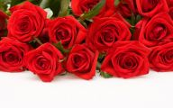 Red Roses Wallpapers Free  18 Hd Wallpaper