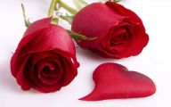 Red Roses Wallpapers Free  4 Free Hd Wallpaper