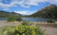 Rocky Mountain National Park Wildflowers 11 Cool Hd Wallpaper