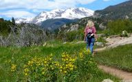 Rocky Mountain National Park Wildflowers 22 Cool Hd Wallpaper