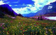 Rocky Mountain Wildflowers Photos 28 Cool Wallpaper