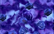 Wallpaper Of Blue Roses  6 Hd Wallpaper