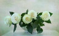 White Roses Wallpapers For Desktop  1 Background Wallpaper
