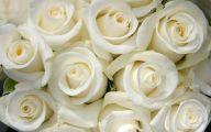 White Roses Wallpapers For Desktop  3 Cool Hd Wallpaper