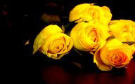 Yellow Rose Wallpaper  38 Cool Hd Wallpaper