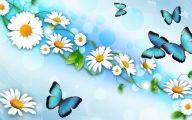 Black Petals Flowers Kenya  7 Free Hd Wallpaper