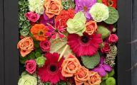 Black Rose Flowers Knutsford  1 Desktop Wallpaper
