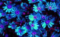 Blue Flower Arrangements  11 High Resolution Wallpaper