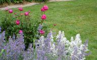 Chezmoi Collection Purple Rose Flower Garden  5 Background