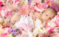 Cute Flower Wallpapers  28 Background