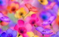 Cute Flower Wallpapers  4 Free Hd Wallpaper