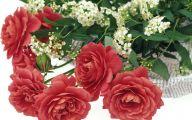 Flower Language Blue Rose  15 Desktop Background