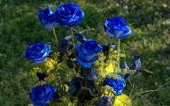 Flower Language Blue Rose  34 Wide Wallpaper