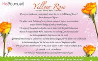 Flower Meaning Yellow Rose  12 Cool Hd Wallpaper