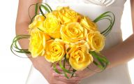 Flower Meaning Yellow Rose  18 Cool Wallpaper