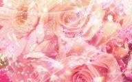 Pink Rose Flower Wallpaper  5 Background