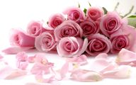 Pink Roses Flowers Pictures  5 Background