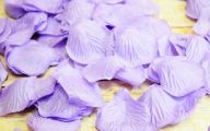 Purple Flower Rose Petals Bulk  25 Free Wallpaper
