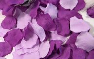 Purple Flower Rose Petals Bulk  6 Background
