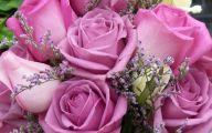 Purple Rose Flower  2 Desktop Background