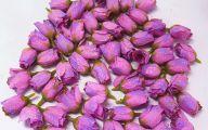 Purple Rose Silk Flower  18 Background
