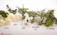 White Flowers Centerpieces  15 Hd Wallpaper