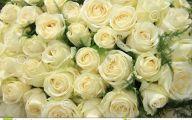 White Rose Flower Arrangements  35 Cool Wallpaper
