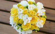 White Rose Flower Essence  38 Cool Wallpaper