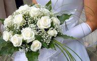 White Rose Like Flower  27 Free Hd Wallpaper