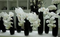 Black Flower Arrangements  53 Cool Wallpaper