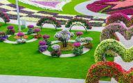 Black Flower Gardens  5 Widescreen Wallpaper