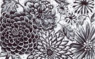 Black Flower Gardens  8 Desktop Wallpaper