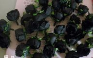 Black Flowers For Sale 2 High Resolution Wallpaper