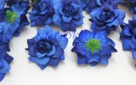 Blue Flowers Bag Decoration 24 Widescreen Wallpaper