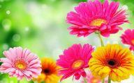Flower Wallpaper 3D 1 Widescreen Wallpaper